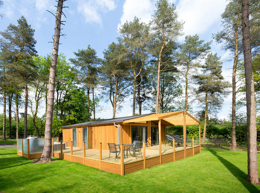 Modern lodge set within pine trees and surrounded by grass