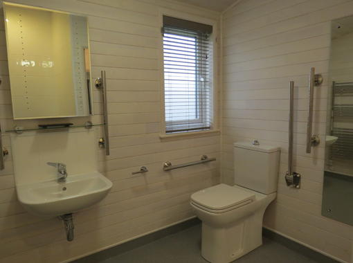 Accessible wet room with hand rails