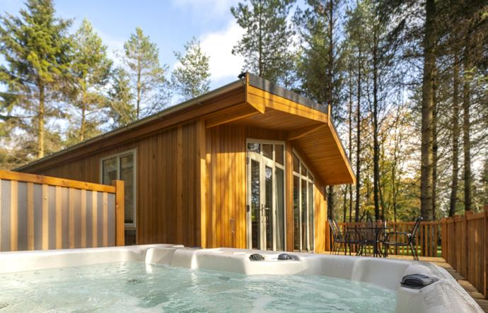 Luxury lodge with hot tub and forest views