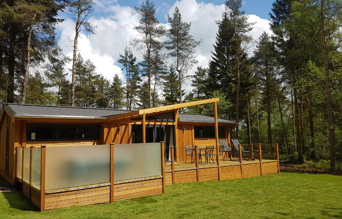 Modern bespoke lodge within a forest