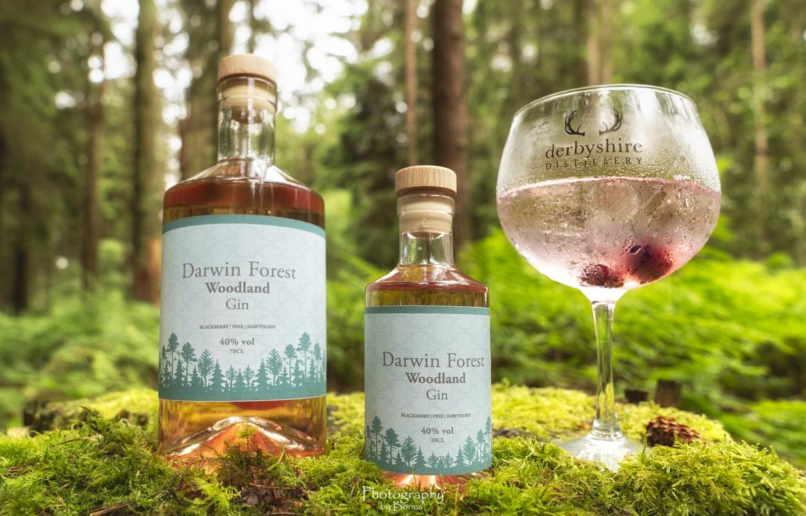 Darwin Forest branded gin displayed in woodland setting
