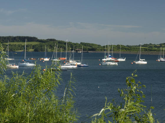 Sailing boats on Carsington Reservoir