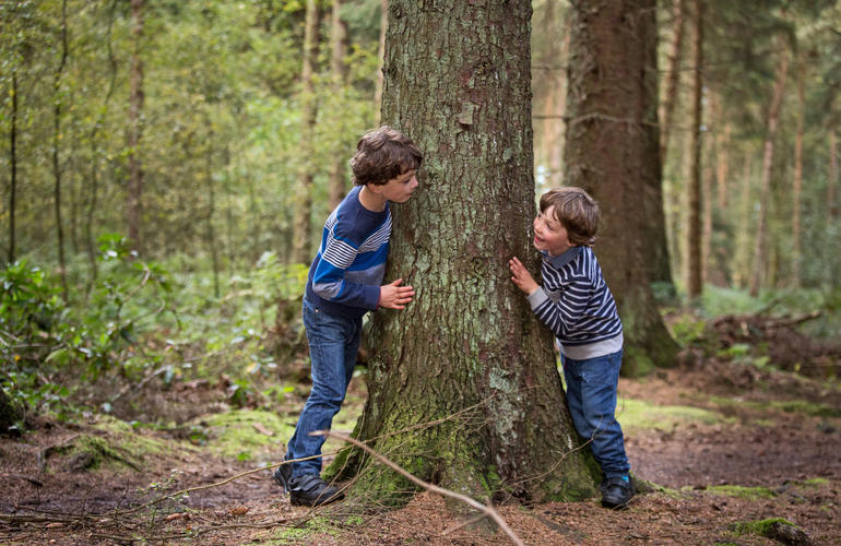 Two brothers playing around a tree in the forest