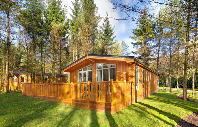 Log cabin surrounded by trees